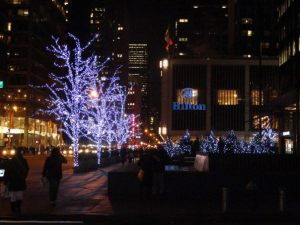 Beautiful NYC at Christmas